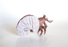 Hermit Crab (folding~well) Tags: hermitcrab paper origami shell crab folding