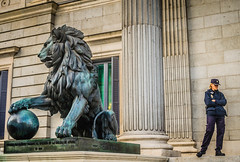 A Little Bit of a Fight? (Abhishek Shirali) Tags: madrid spain nikon europe lion eurotrip 1855 sculptures