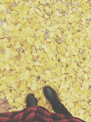 like autumn leaves (effieabigail) Tags: feet shoes dr iphone martens tumblr vsco