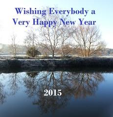 Happy New Year! (Martin F Hughes) Tags: uk southwest slr nature canon eos martin explore exeter hughes happynewyear 500d 2015 100400 martinhughes