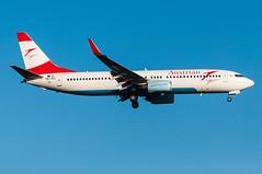 OE-LNQ - Austrian - Boeing 737-800 (5B-DUS) Tags: plane airplane airport aircraft aviation jet international boeing flughafen dusseldorf düsseldorf flugzeug spotting 737 austrian planespotting 737800 luftfahrt dus b738 eddl oelnq