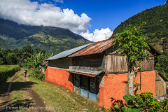 Village House, Baglungpani-Khudi, Annapurna Circuit, Nepal (Feng Wei Photography) Tags: travel bridge nepal cloud house color green tourism beautiful horizontal rural trekking trek landscape scenery colorful asia village terrace outdoor relaxing scenic hike valley np lush hillside annapurnacircuit annapurna tranquil himalayas gandaki lamjung terracefield westernregion annapurnaconservationarea baglungpani