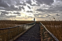 Walk into the light (Andyorf) Tags: lighthouse canon tamron 600d newportwetlands andyorf