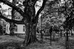 Salem Walker Cemetery (Crunch53) Tags: cemeteries cemetery grave graveyard outdoors scenery michigan ground walker salem burying