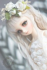 Lotus ~ (n i h i l) Tags: ball asian doll sdm bjd vs dollfie volks midi limited abjd atelier creations msd jointed nihil byakuren nihils
