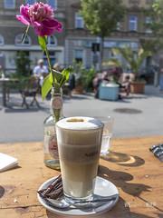 Kaffee ... Nelke (werk-2at) Tags: wien sterreich cafe natur pflanzen kaffee markt blume frhstck nelke wienausflug 3motiv