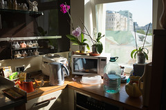 home nature morte, the 3rd may 2016 (ksushasmyr) Tags: life morning light stilllife sun sunlight nature kitchen morninglight still moscow morte naturemorte
