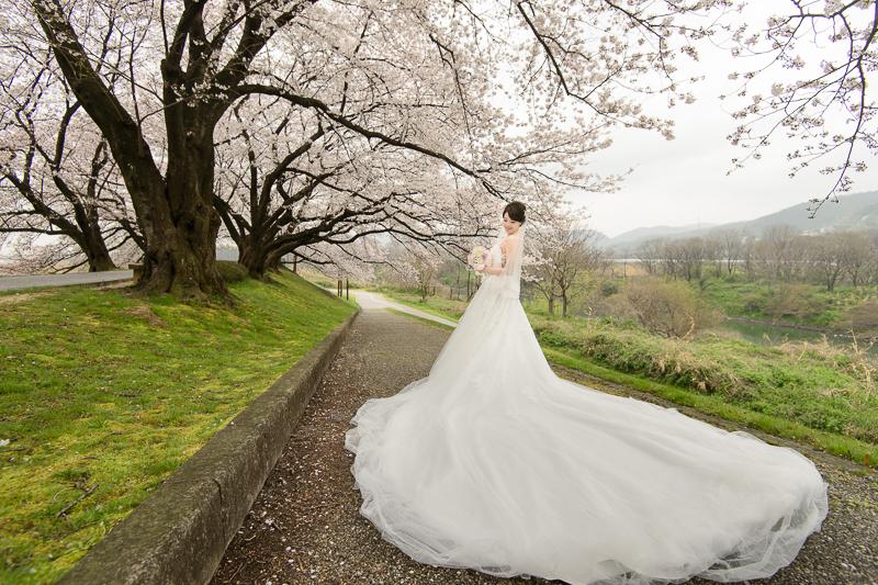 日本婚紗,京都婚紗,櫻花婚紗,新祕藝紋,cheri婚紗包套,cheri婚紗,KIWI影像基地,cheri海外婚紗,海外婚紗,婚攝,DSC_0019