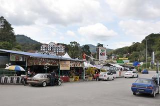cameron highlands- malaisie 1