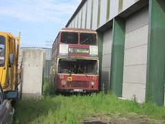 East Yorkshire 519 PAG519W near Paull (1280x960) (dearingbuspix) Tags: preserved eastyorkshire 519 eyms pag519w