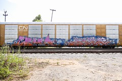 Coma Afex (Revise_D) Tags: graffiti freight coma revised bsgk benching afex benchingsteelgiants