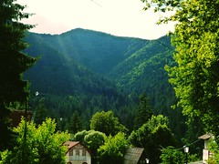 Hills.  (Szidii) Tags: houses sky mountain tree green nature beautiful clouds forest landscape outdoors focus sunny hills romania beautifullandscape hargita tusndfrd tusnd