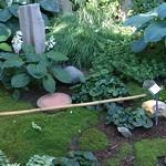 Moss Garden, public garden walk thumbnail