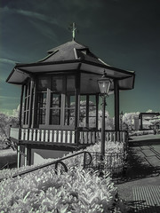 Horniman Museum (blackwoodse6) Tags: uk blue england white london canon ir outdoor bluesky bandstand foilage southlondon foresthill falsecolour southeastlondon hornimanmuseum 720nm canong10