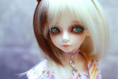 (20) (Tepsia_) Tags: doll bjd luts abjd bory balljointeddoll kdf dollphotography kiddelf asianballjointeddoll dollphoto lutskiddelf lutsdoll borygirl   lutsbory