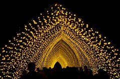 Cathedral of Light (missgeok) Tags: people art spectacular golden nightlights nightshot perspective sydney silhouettes illumination australia tunnel circularquay installation attraction ledlights royalbotanicgarden cathedraloflight vividsydney2016