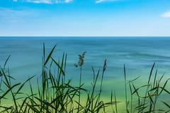 (klgfinn) Tags: sea summer sky water grass skyline landscape balticsea shore