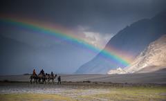 Rainbow over Nubra Valley. (gautfoto) Tags: india rainbow valley magical camels jk ladakh nubra ladakh2016