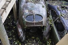 VW Export 1949 (154) (belowodje) Tags: graveyard vw volkswagen lost beetle rusty places junkyard kfer kaufdorf