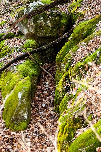 Cedar Bluffs Nature Preserve - December 26, 2014