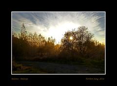 806 Kopie (njung62) Tags: belarus gomel pripyat odenbach pripjat kindervontschernobyl weisrussland ubort jungnorbert norbertjung lelchitsy lelschizy borowoje borowoe polessje hohenllentartak