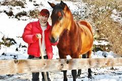 ~~Mon Elisa~~ (Jolisa) Tags: two horse cheval joe deux elisa jument janvier2015