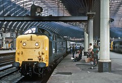 55016, York, August 1981 (David Rostance) Tags: york people railwaystation deltic englishelectric class55 55016