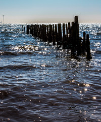 DIAMONDS IN THE SEA (David Joyce 581) Tags: wood sea sun water sparkle mersea
