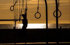 Swinging Around, Venice Beach LA (David O'Hare) Tags: california venice sunset usa beach america la los nikon angeles rings gym d90