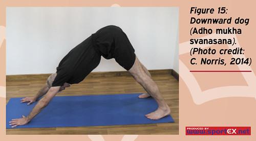 43DY25_3 (sportEX journals) Tags: yoga rehabilitation massagetherapy sportex sportsinjury sportsmassage sportstherapy sportexdynamics strengtheningexercises sportsrehabilitation