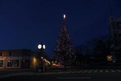 Kentville - Xmas 2014 (chester902) Tags: xmas canada night canon rebel mainstreet novascotia christmastree kentville 2014 cornwallis outdoorlight newminas
