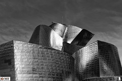 Detalle fachada Guggenheim Bilbao (Alesfra) Tags: city roof light sky blackandwhite bw espaa cloud black reflection building byn blancoynegro blanco luz rio metal museum architecture f