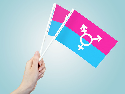 Transgender Paper Stick Flags