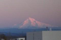 Mt. Hood #4