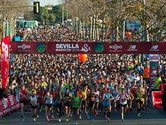 Zurich Maratón de Sevilla4