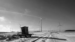 Uitkijkhutje (Bram Meijer) Tags: winter snow blackwhite zwartwit sneeuw eifel