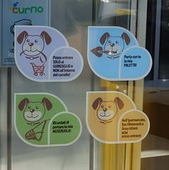 I cani al centro commerciale, sì! Ma...