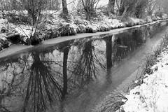 Canal Vauban (n1r3) Tags: leica snow france ice canal 28mm alsace neige mate glace vauban gel trielmar urschenheim m9p