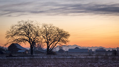 New Years sunrise in Delta 2015 (Gord McKenna) Tags: new panorama house canada barn sunrise river washington nikon day mt baker bc stitch state farm pano delta columbia front mount blueberry fields british years fraser gord d800 mckenna gordmckenna