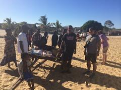 Christian and some men near a zebu cart .