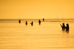 anglers (k n u l p) Tags: morning lake fishing sony tamron 70200mm biwa 琵琶湖 a001 nex7
