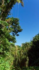 2014-12-11_10-35-37_ILCE-6000_6294_DxO (miguel.discart) Tags: voyage cuba dxo vacance visite 2014 editedphoto createdbydxo
