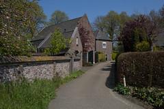 Demen - Sint Wilberstraat (grotevriendelijkereus) Tags: road street holland netherlands town village nederland brabant dorp weg noord straat