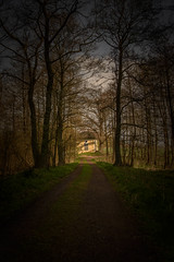 One of my many pathways (Jarek Jahl) Tags: wood trees light shadow sunlight mystery forest way wonder view miracle faith poland chapel pathway calvary holyplace krzeszow lowersilesia sigmalenses nikond7200 sigma1835mmf18dchsmart