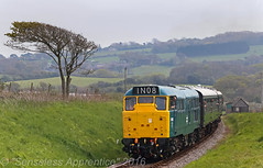 5580 (31162) (MSRail Photography) Tags: passenger preserved 31 class31 brblue