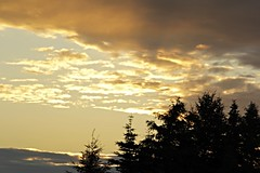 Yellow Sunset (Apollo51x) Tags: light sunset sky sun weather skyline clouds sunrise canon skyscape solar colorful skies cityscape shadows spectrum atmosphere ciel sherbrooke nubes cielos nuage climatechange cloudscape chemtrails cloudformations geoengineering skysolar