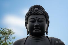 Detail of Tokyo Buddha () (christinayan01) Tags: japan temple tokyo buddha colossal