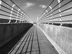 View (toletoletole (www.levold.de/photosphere)) Tags: iphone bw zeeland gitter sw grid beveland brcke niederlande bridge netherlands