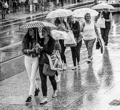 Form an Orderly Line (EightBitTony) Tags: nottingham uk england people blackandwhite bw woman wet water monochrome rain june female umbrella canon mono blackwhite women unitedkingdom pavement crowd streetphotography gb canondslr canoneos citycentre nottinghamshire 2016 canoneos7dmarkii canon7d2 canon7dmarkii canon7dmark2 canon7dii canoneos7d2 canoneos7diicanon7dmk2