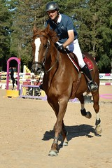 DSC_0880 (2) (ploufjf_64) Tags: paus show jumping chevaux pau 2016